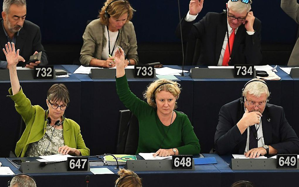 Het Europees Parlement stemde woensdag over het instellen van een strafprocedure tegen Hongarije. beeld AFP