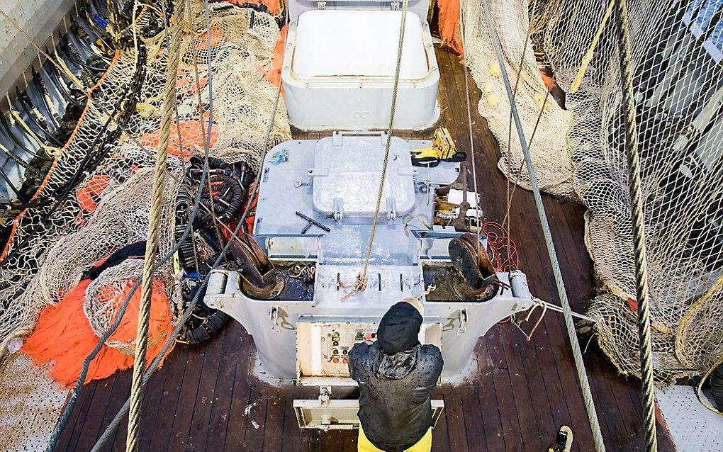 Pulsnetten aan boord van een kotter uit Texel. beeld ANP, Niels Wenstedt