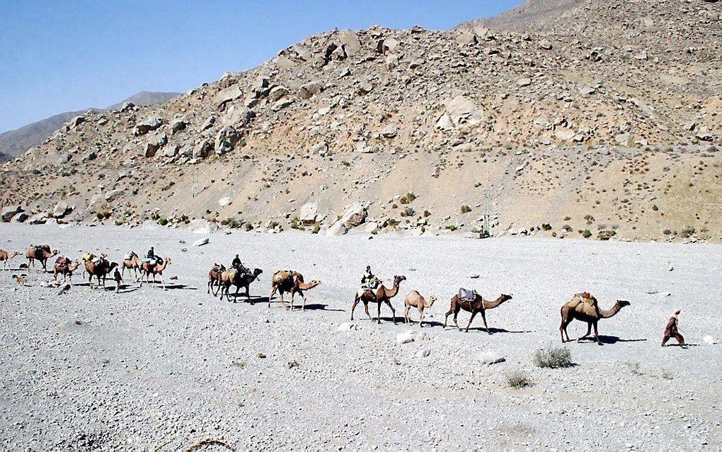 beeld EPA, Waheed Khan