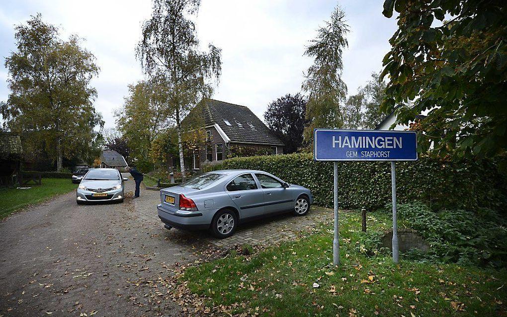 Het dorpje Hamingen in de gemeente Staphorst. Een groot deel staat te koop: drie boerderijen plus erf, een wat moderner pand en een fraaie moestuin. Vraagprijs: 1,35 miljoen euro. Foto ANP