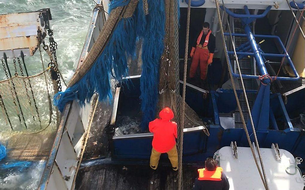 Pulsvissers aan het werk op de Noordzee. beeld RD