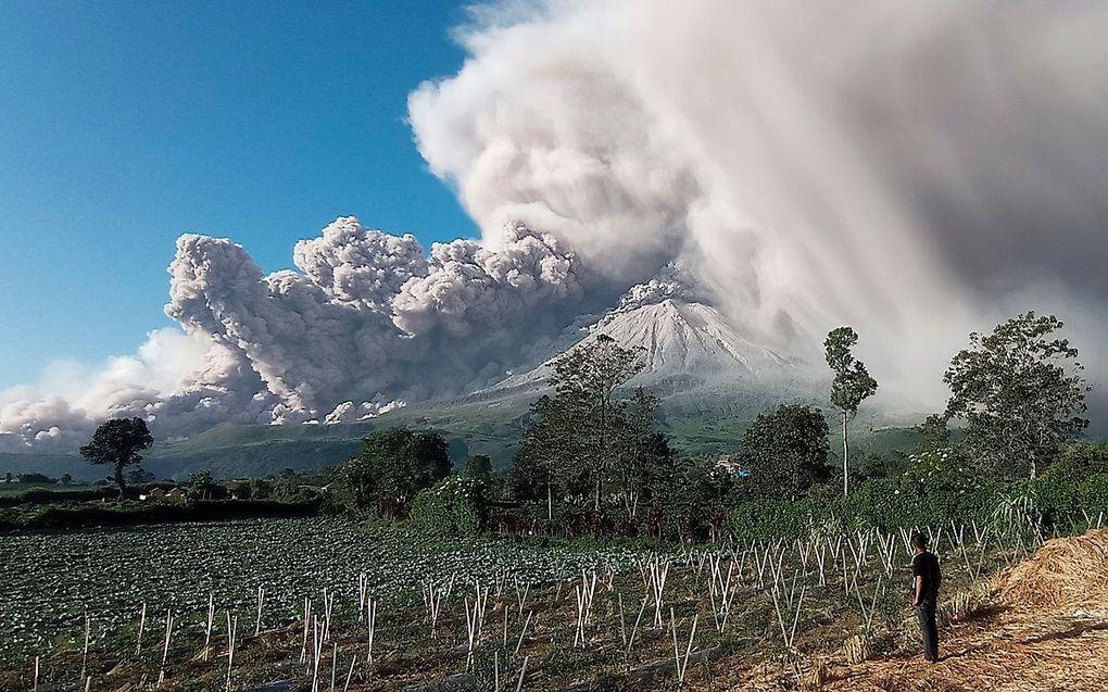 beeld AFP, Bahari Tarigan