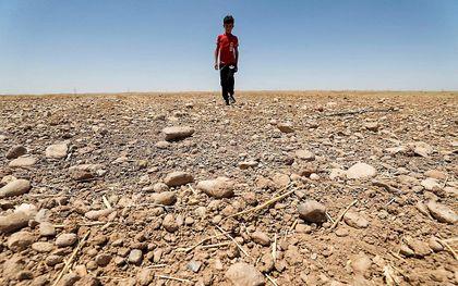 Droogte in Irak. beeld AFP, Ahmad al-Rubaye