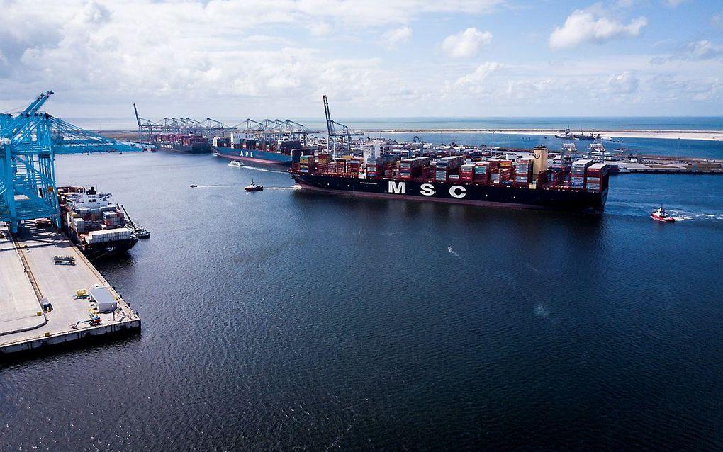 De MSC Gulsun, het grootste containerschip ter wereld, arriveert in 2019 in de Rotterdamse haven. Het 400 meter lange gevaarte is het eerste schip dat over de breedte 24 containers naast elkaar kan vervoeren. beeld ANP, Sem van der Wal