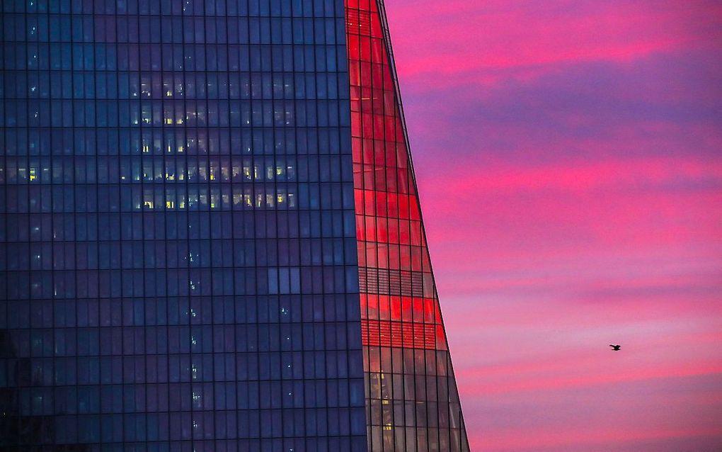 Gerbouw van de ECB in Frankfurt. beeld AFP, Armando BABANI