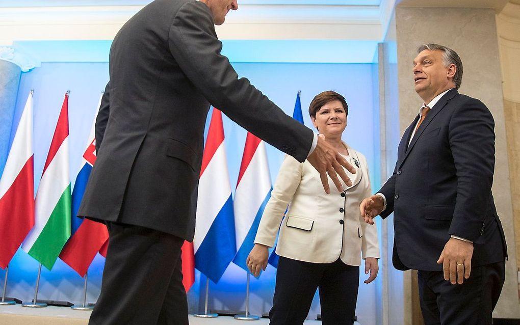 Rutte en Orban in 2017. beeld ANP, JERRY LAMPEN