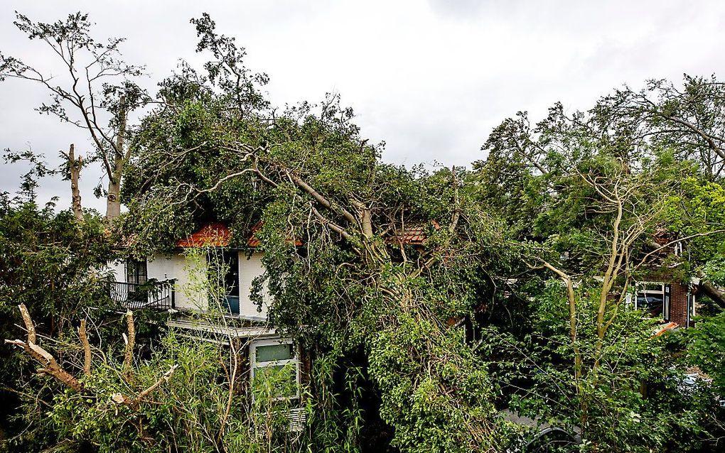 Een verwoestende valwind trok vrijdag zo rond half zes in de namiddag in een paar minuten een spoor van vernielingen in Leersum. beeld ANP, Sem van der Wal