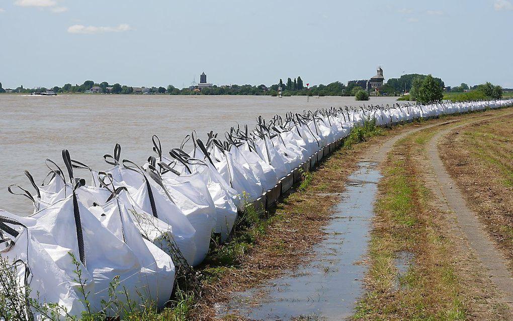 Big bags met zand op de zomerdijk in de Willemspolder tussen Tiel en Echteld, tegen het hoge water in de Waal. beeld VidiPhoto