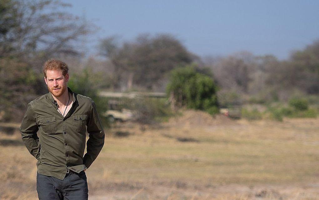 De Britse prins Harry tijdens een bezoek aan Botswana in 2019. beeld EPA, Dominic Lipinski
