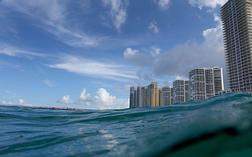 Kust bij Florida. beeld AFP, Joe Raedle