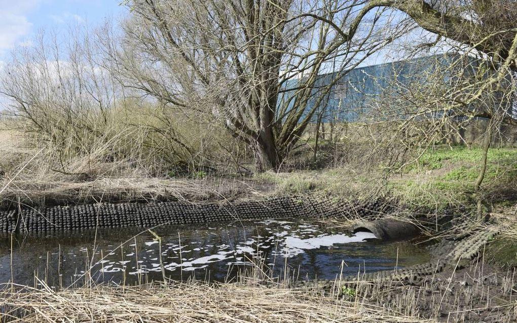 Gezuiverd rioolwater loopt de rivier de Lek in. beeld Orvion