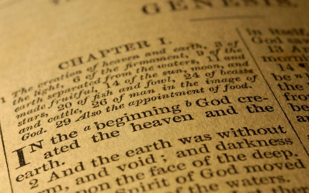 """""""Mijns inziens staat nu juist het taaleigen van Genesis 1-3 de leesregel van het perspectivisme in de weg. Genesis is niet zozeer verhalend, als wel historisch documenterend.""""beeld iStock"""