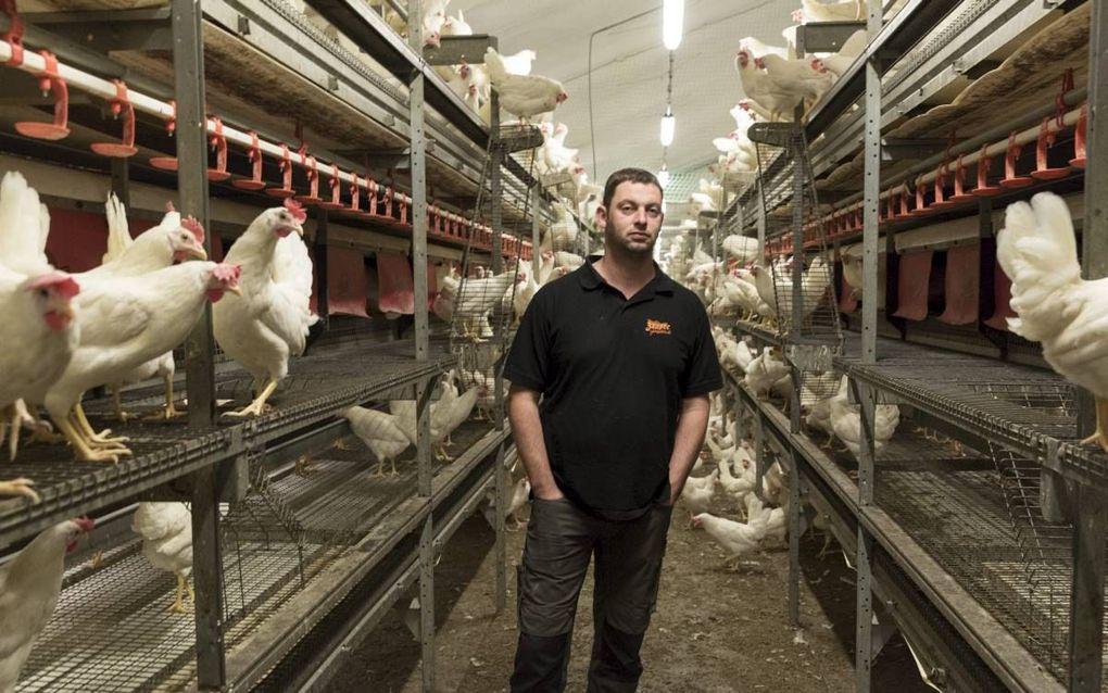 """WITTEVEEN. De eicode van pluimveehouder Reinier Bouwhuis staat op de waarschuwingslijst die voedselwaakhond NVWA heeft bekendgemaakt. Onterecht, vindt de Drentse boer. """"Die eieren zijn nooit op de markt gekomen.""""beeld Sjaak Verboom"""