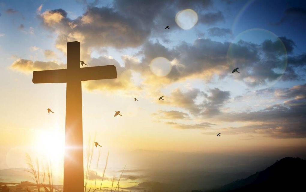 """""""Als onze belijdenis oplicht vanuit het (vroegkerkelijke) belijden van Christus als Hoofd van de kerk moeten we ons ook afvragen hoe reformatorisch en katholiek het eigenlijk is om in statuten te spreken over 'de Schrift en de drie formulieren van eenheid"""