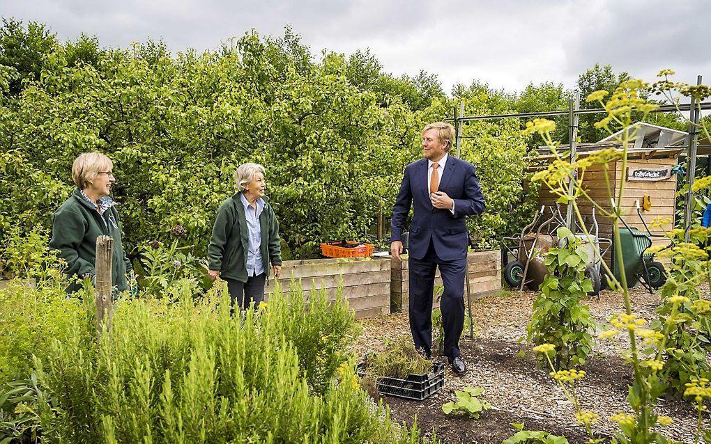 Koning Willem-Alexander bezoekt een perenboomgaard in Zoetermeer. beeld ANP