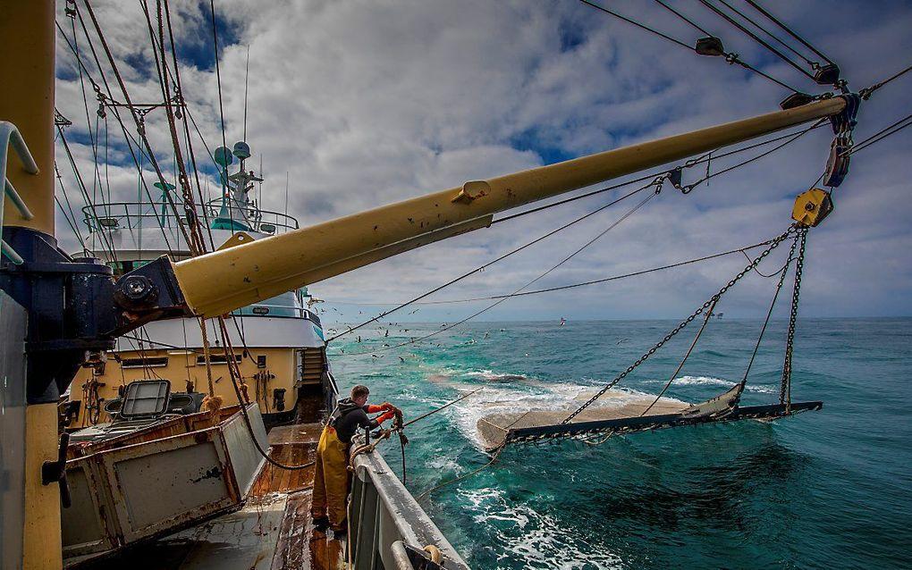 Nederlandse pulsvissers aan het werk op de Noordzee. beeld ANP, Niels Wenstedt