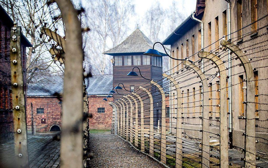 In de jaren 1940-1945 zijn 102.000 van de in totaal 140.000 in Nederland wonende Joden vermoord in Auschwitz (foto), Sobibor en andere kampen. beeld ANP, Remko de Waal