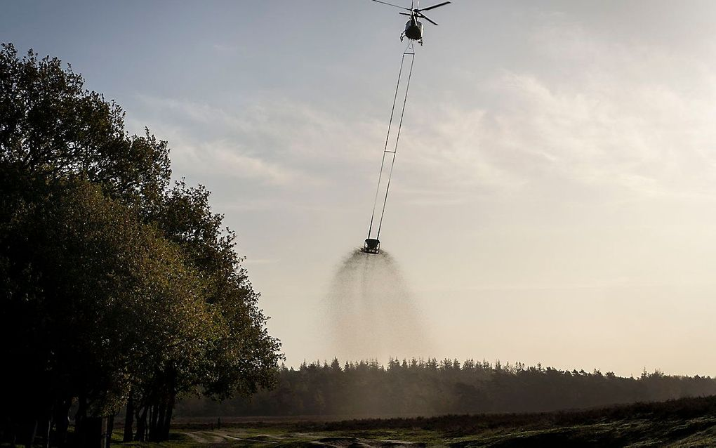 In totaal 1.125.000 kilo aan fijngemalen schelpen wordt er gedropt, drie ton per hectare. beeld Niek Stam