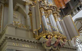 Rugwerk van het Van Hagerbeer/Schnitgerorgel in de Grote Kerk van Alkmaar. beeld Gert de Looze