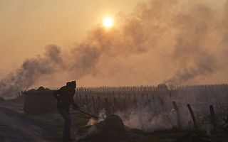 Een wijnbouwer in het Franse Touraine verbrandt strobalen om zijn wijngaard te beschermen tegen de vorst. beeld AFP, Guillaume Souvant