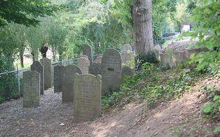 Joodse begraafplaats in Leerdam. beeld André Bijl