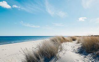 Door corona beleven verleden jaar de stranden leeg.  beeld iStockphoto