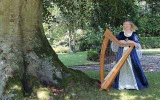 Harpiste Regina Ederveen. beeld Regina Ederveen