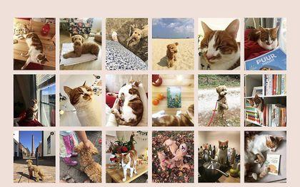 beeld instagram.com/jac.lien