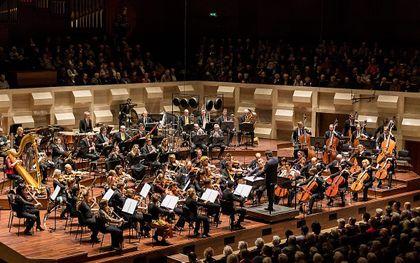 Nederlandse musici leggen het op topniveau af tegen concurrentie van buitenlanders, merkt directeur George Wiegel van het Rotterdams Philharmonisch Orkest. beeld RPhO