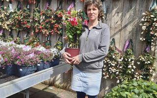 beeld Linda Hoogendijk-Noordegraaf