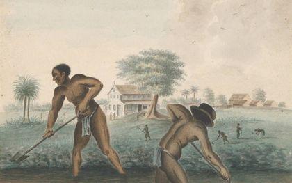 beeld Rijksmuseum