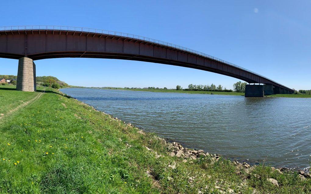 De Rijnbrug bij Rhenen. beeld Wegenwiki, Chris