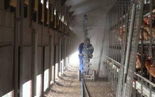 ChickFriend ontsmet een kippenstal. Opname uit een bedrijfsvideo van de Barneveldse onderneming. beeld ChickFriend