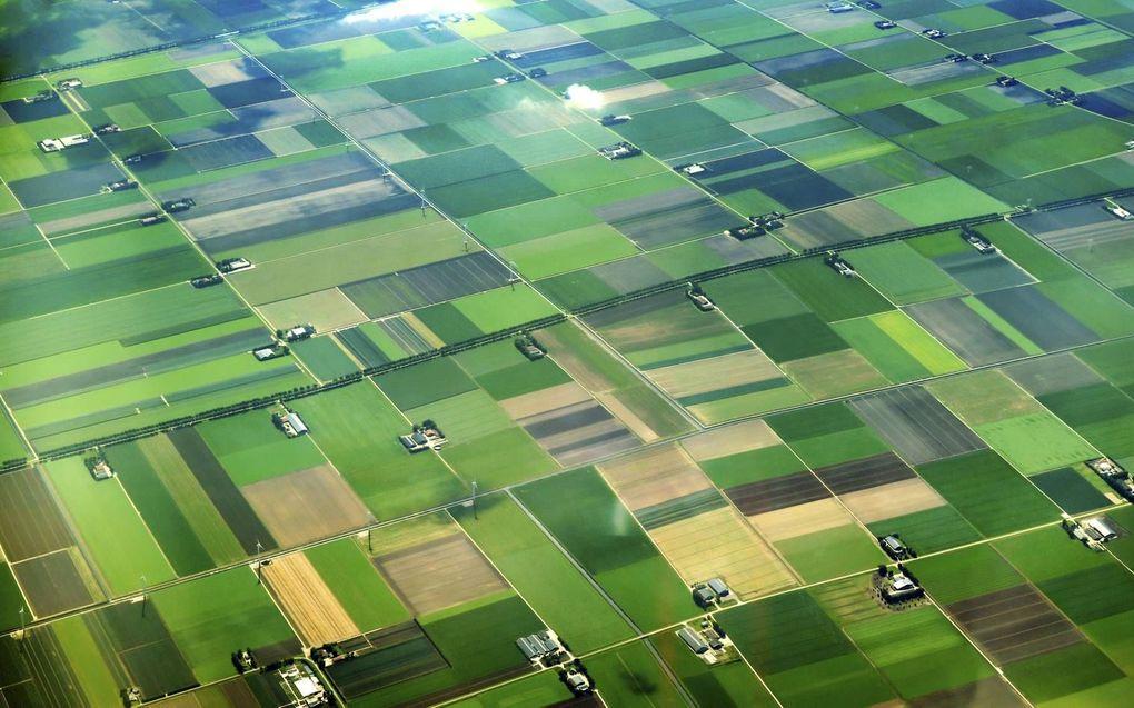 """""""Een land dat zichzelf serieus neemt, zal het agrocomplex beschermen en er tegelijkertijd geopolitiek mee bedrijven. Melkpoeder in ruil voor markttoegang. Bij voorkeur doet Nederland dat in EU-verband."""" beeld iStock"""