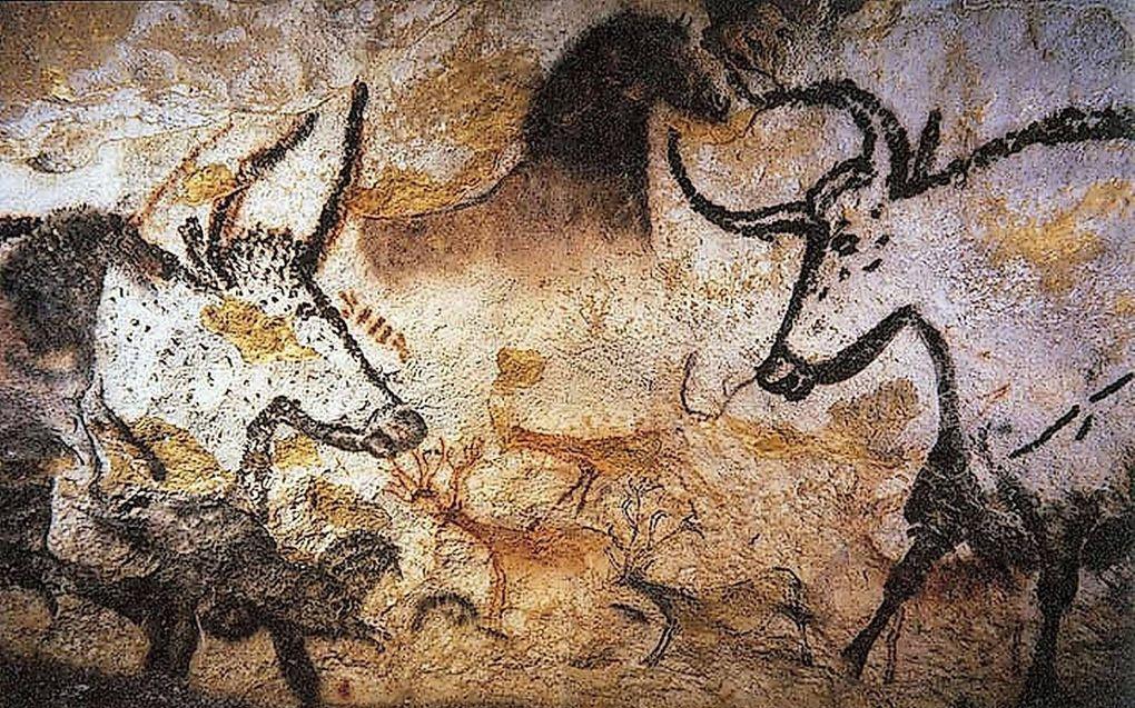 Jager-verzamelaars beeldden verschillende dieren af in de grotten van Lascaux in Frankrijk.beeld Wikipedia, Prof saxx
