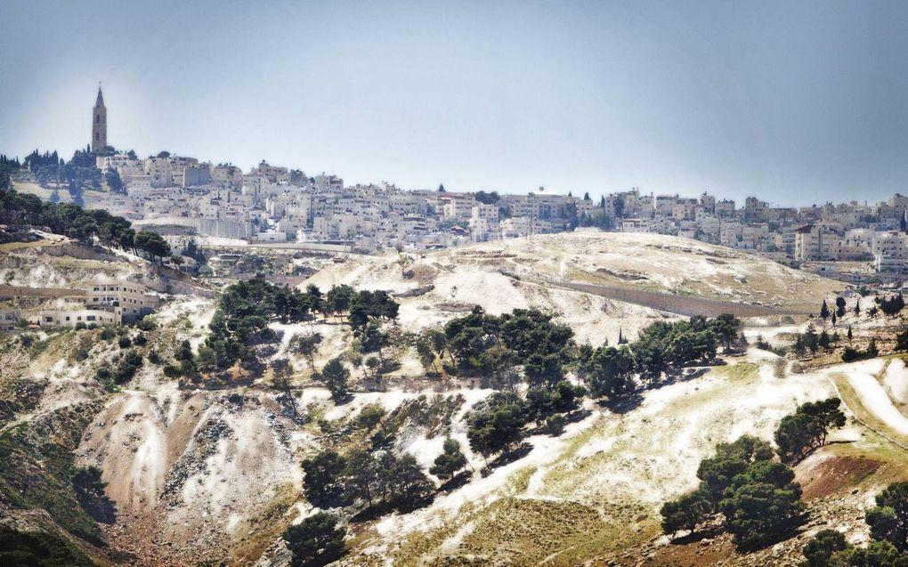 """""""Jezus begon Zijn intocht in Jeruzalem vanuit het dorpje Bethfagé op de Olijfberg (foto). beeld RD, Henk Visscher"""