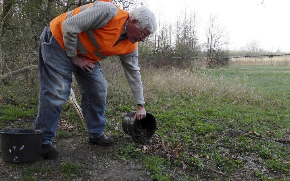 Paul Raven zet de padden uit aan de goede kant van de N225 bij Amerongen.beeld Kees van Reenen