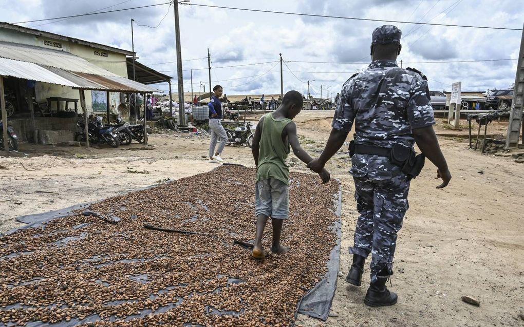 """Twee politieagenten arresteren een kind op een cacaoplantage in Ivoorkust. Dit gebeurde vorige maand in het kader de operatie tegen kinderarbeid """"Nawa 2"""". Zaterdag is het de internationale dag tegen kinderarbeid.beeld AFP, Sia Kambou"""