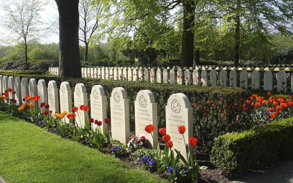 Graven op de Grebbeberg, een van de erevelden die de Oorlogsgravenstichting beheert.beeld RD