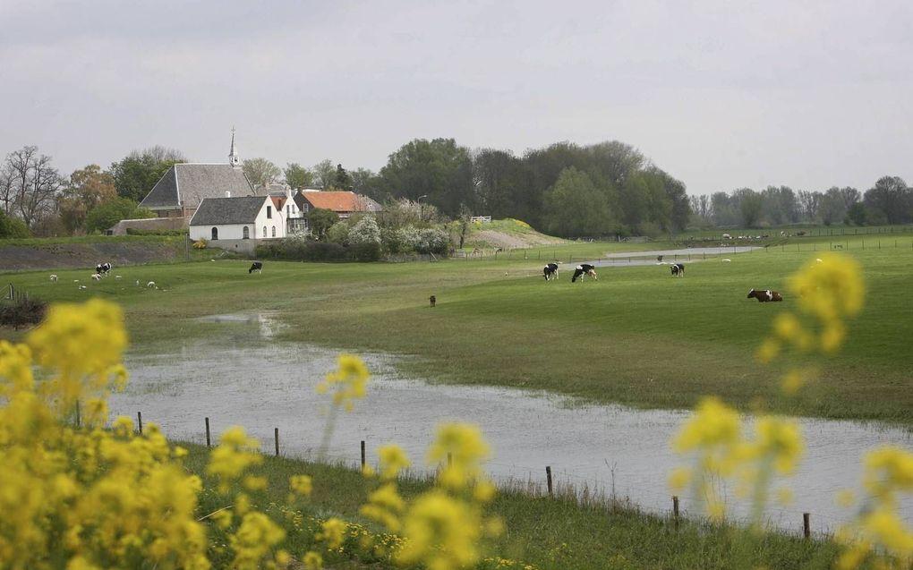 Herwijnen in het voorjaar. beeld RD, Anton Dommerholt