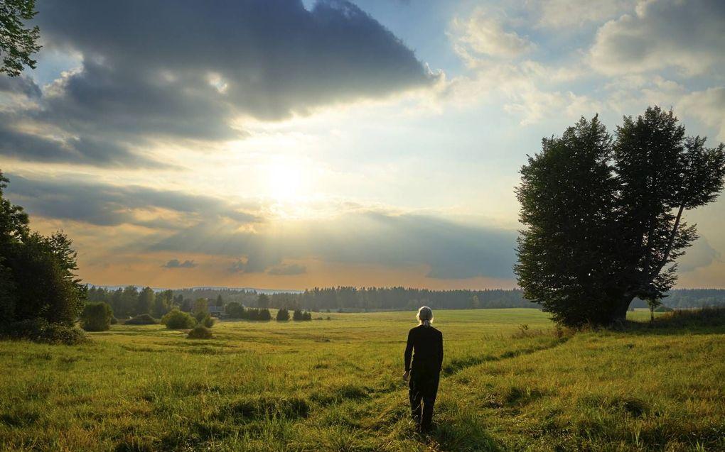 Rond eenzaamheid bestaat een taboe. De onterechte gedachte is dat iedereen een geweldig leven heeft, met veel vrienden. beeld iStock
