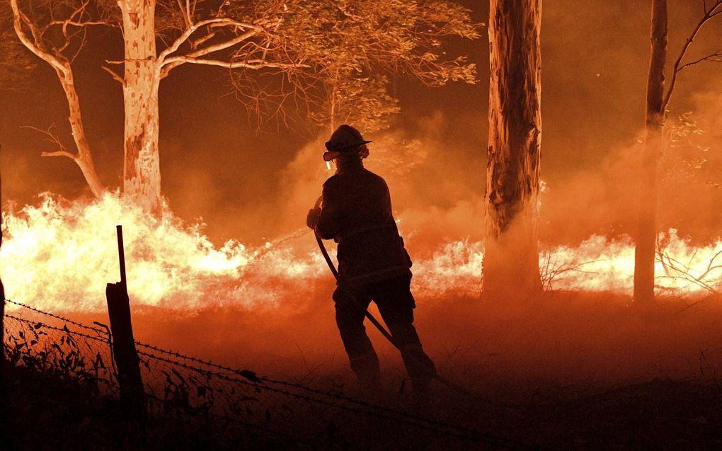 """""""We kunnen ons blindstaren op het ene maar het andere vergeten. Wie heeft het nog over de bosbranden in Australië?"""" beeld AFP, Saeed Khan"""