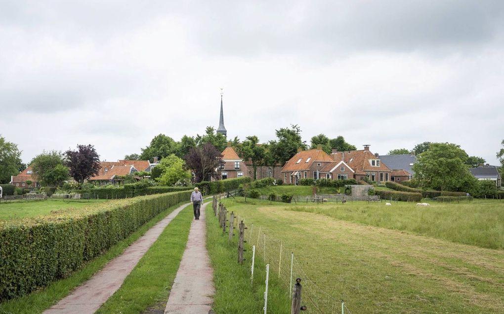 Het Groningse Niehove ligt op een wierde, een verhoging in het landschap.beeld Niek Stam