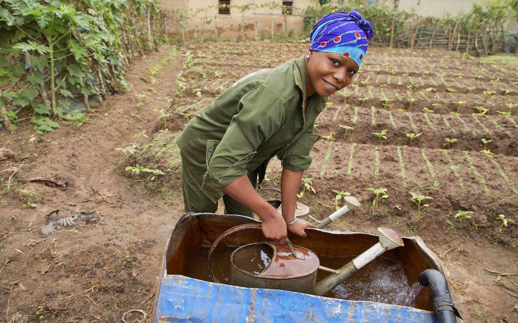Door het werk van Woord en Daad kregen de afgelopen vijf jaar 921.852 mensen een verbeterde toegang tot water en sanitair (Sustainable Development Goal nummer 6). Foto: schoon water in Benin.beeld Jaco Klamer