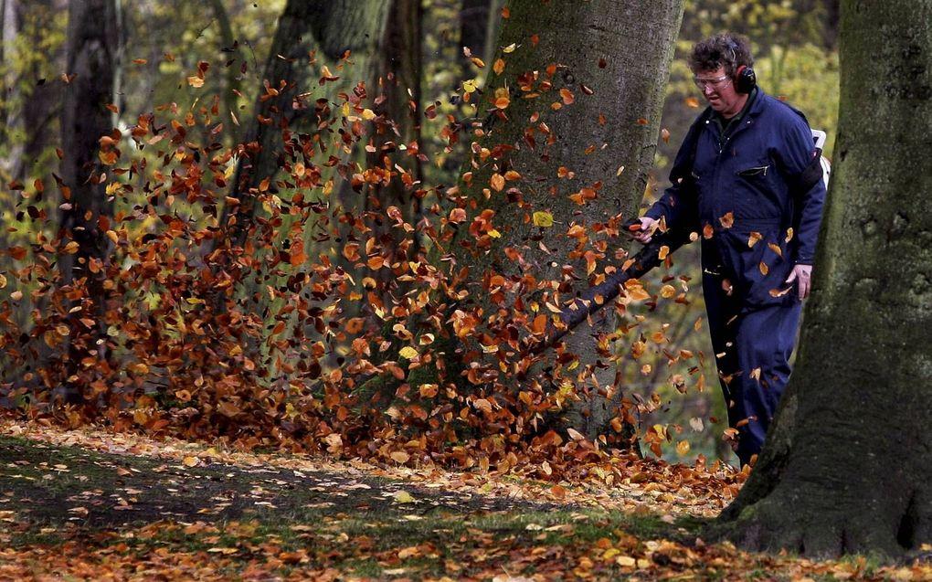 Bladblazen zou in Nederland verboden moeten worden, vindt IVN Natuureducatie.beeld ANP, beeld Olaf Kraak