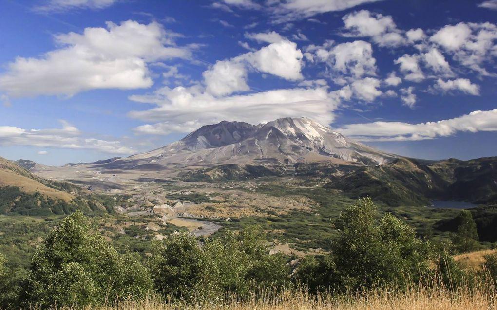 De hellingen van Mount Saint Helens zijn 's zomers alweer helemaal groen. beeld USGA, Liz Westby