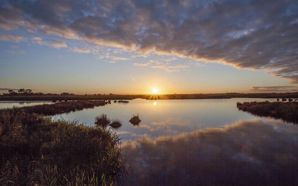 Vroeger één groot moeras en nu weer: De Onlanden op de provinciegrens van Drenthe en Groningen.beeld Natuurmonumenten