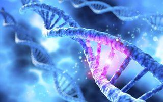 """""""In DNA-moleculen komen van nature nooit zwavelatomen en dus kunnen er ook geen bruggen tussen zwavelatomen zijn."""" beeld iStock"""
