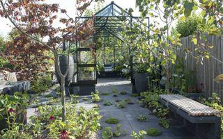 """De modeltuin """"Harvesting elements"""" van Tuinbranche Nederland laat zien van de trend van 2019 is in tuinenland: veel groen. Zelfs in de tegelpaden staan planten. In de kas kunnen mensen zelf hun groente en fruit kweken, een uiting van duurzaamheid. Onder a"""