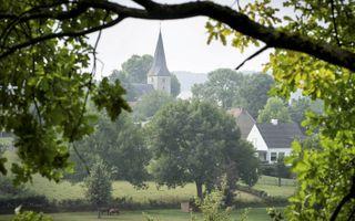 Het Limburgse Noorbeek ligt in het dal verscholen. Het heeft een traditie met dennen.beeld Niek Stam